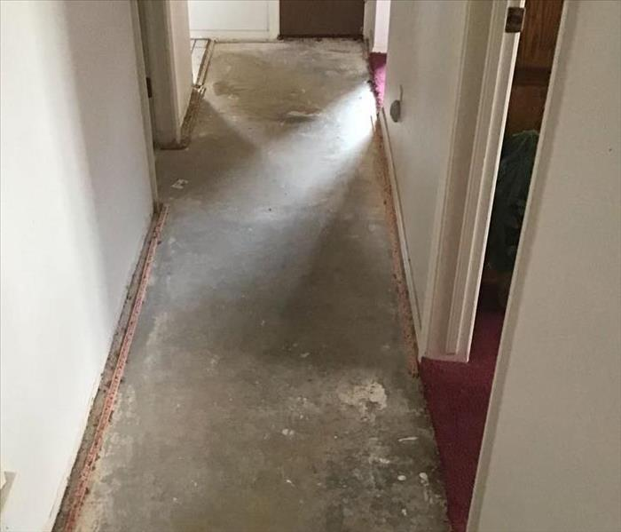carpet removed post mitigation